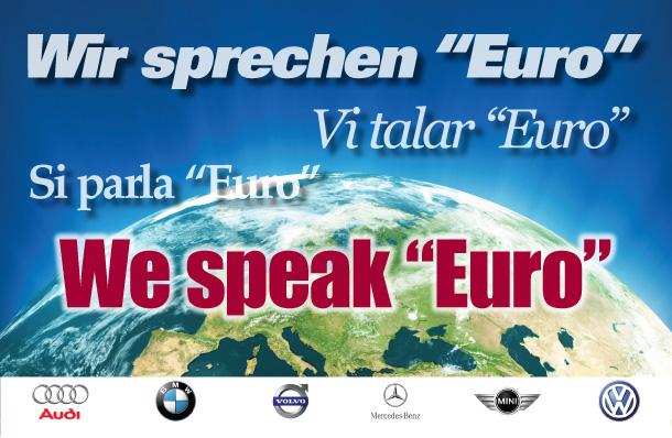 We-Speak-Euro-2013-1